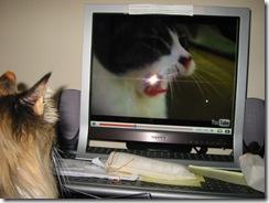 watchingyoutube